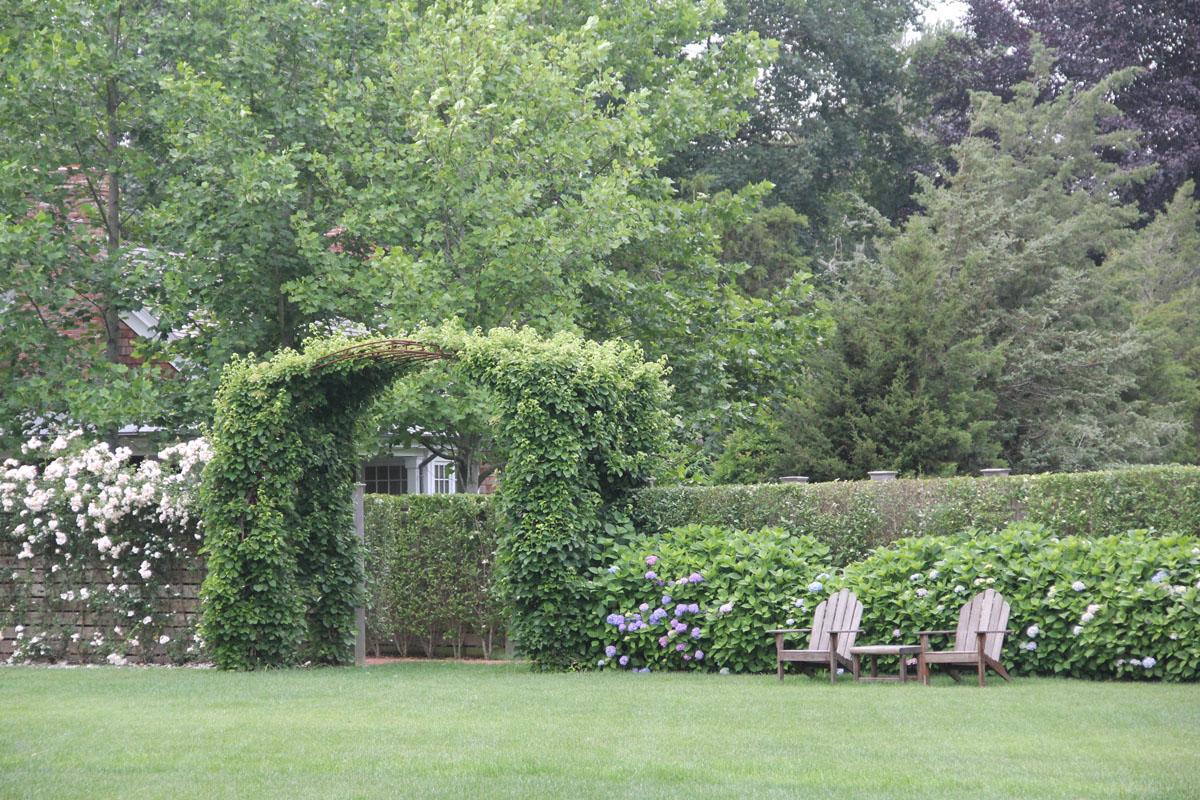 custom-archway-with-climbing-hydrangea