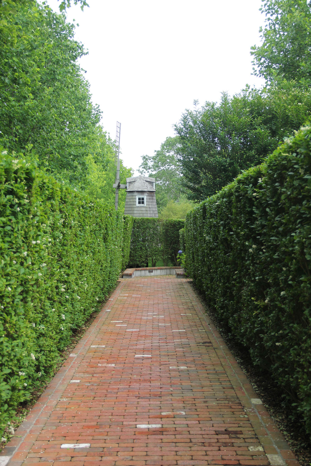custom-brick-walkway-with-privacy-privet-2